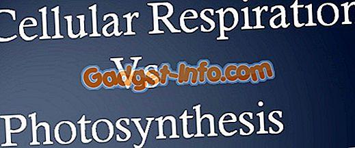 Разница между клеточным дыханием и фотосинтезом