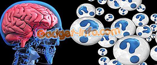 bioforskelle: Forskel mellem demens og Alzheimers