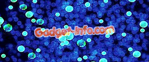 الفرق بين البكتيريا الموجبة الجرام والبكتيريا سالبة الجرام