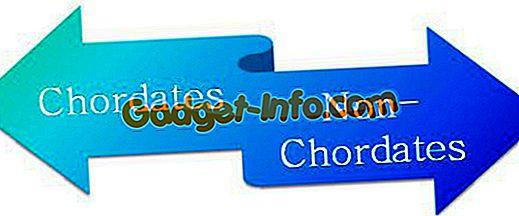 bioforskelle: Forskel mellem Chordates og Non-Chordates
