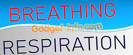 Разлика между дишането и дишането