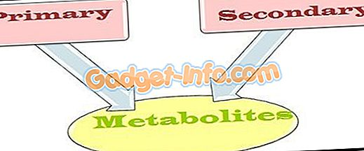 Rozdiel medzi primárnymi metabolitmi a sekundárnymi metabolitmi