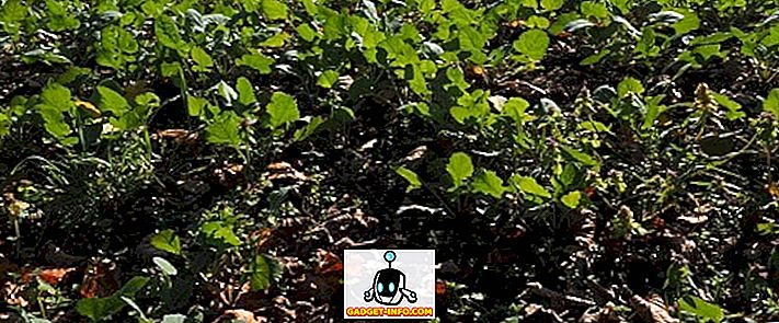 rozdiel medzi: Rozdiel medzi hnojom a hnojivom
