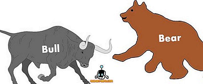 Erinevus Bull ja Bear Market vahel