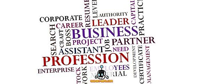 Разлика между бизнес и професия