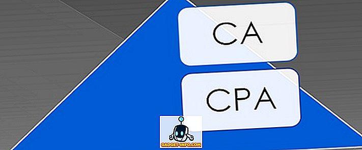 verschil tussen: Verschil tussen CA en CPA