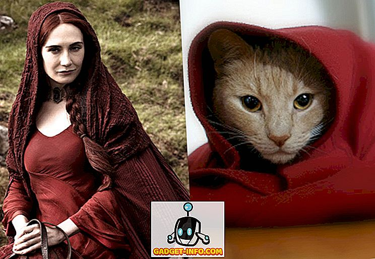 Cat Doppelgangers of Game of Thrones Tecken (bilder)