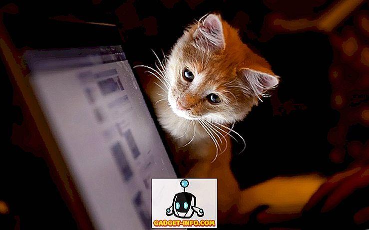 Technik - So öffnen Sie eine geschlossene Registerkarte in Chrome, Firefox, Safari und IE