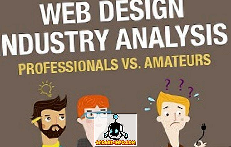 مصممي الويب: المحترفون مقابل.  الهواة (معلومات رسومية)
